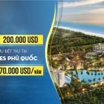 Đầu tư sinh lời từ cho thuê căn hộ condotel Movenpick Phú Quốc